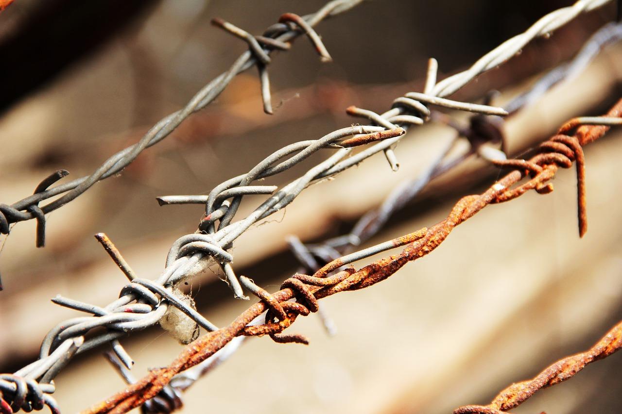Dettaglio di filo spinato arrugginito