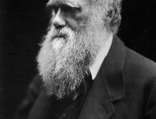 Mark Pallen racconta un insolito Darwin
