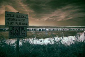 Parco Delta del Po IR 29.08.15